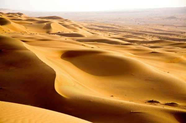 Enjoy an Enigmatic Desert Safari in Dubai