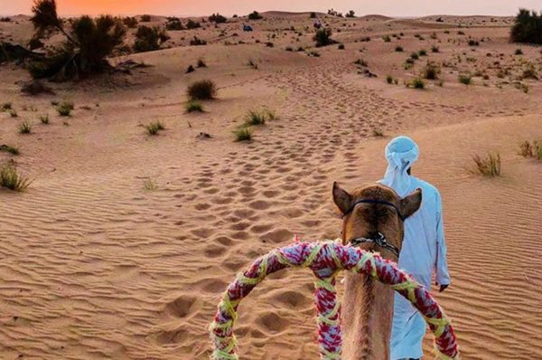 Thrilling Desert Activities In Around Dubai