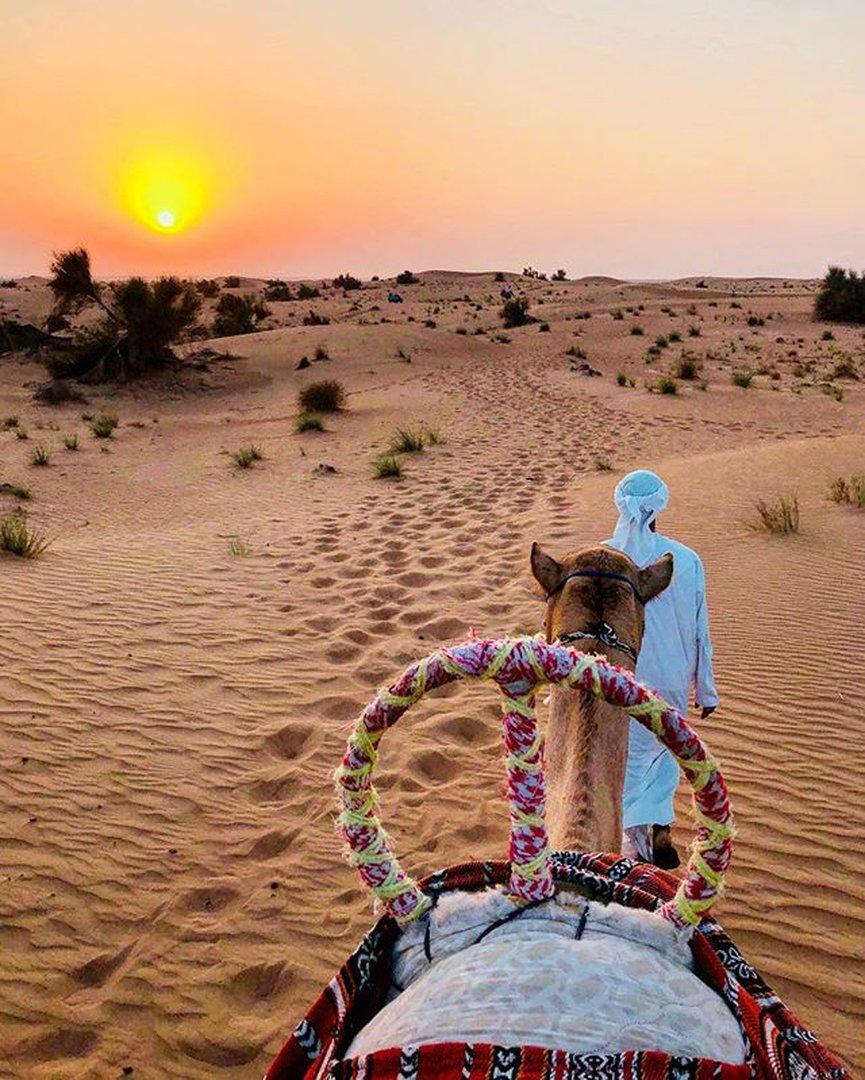 Thrilling Desert Activities In Around Dubai