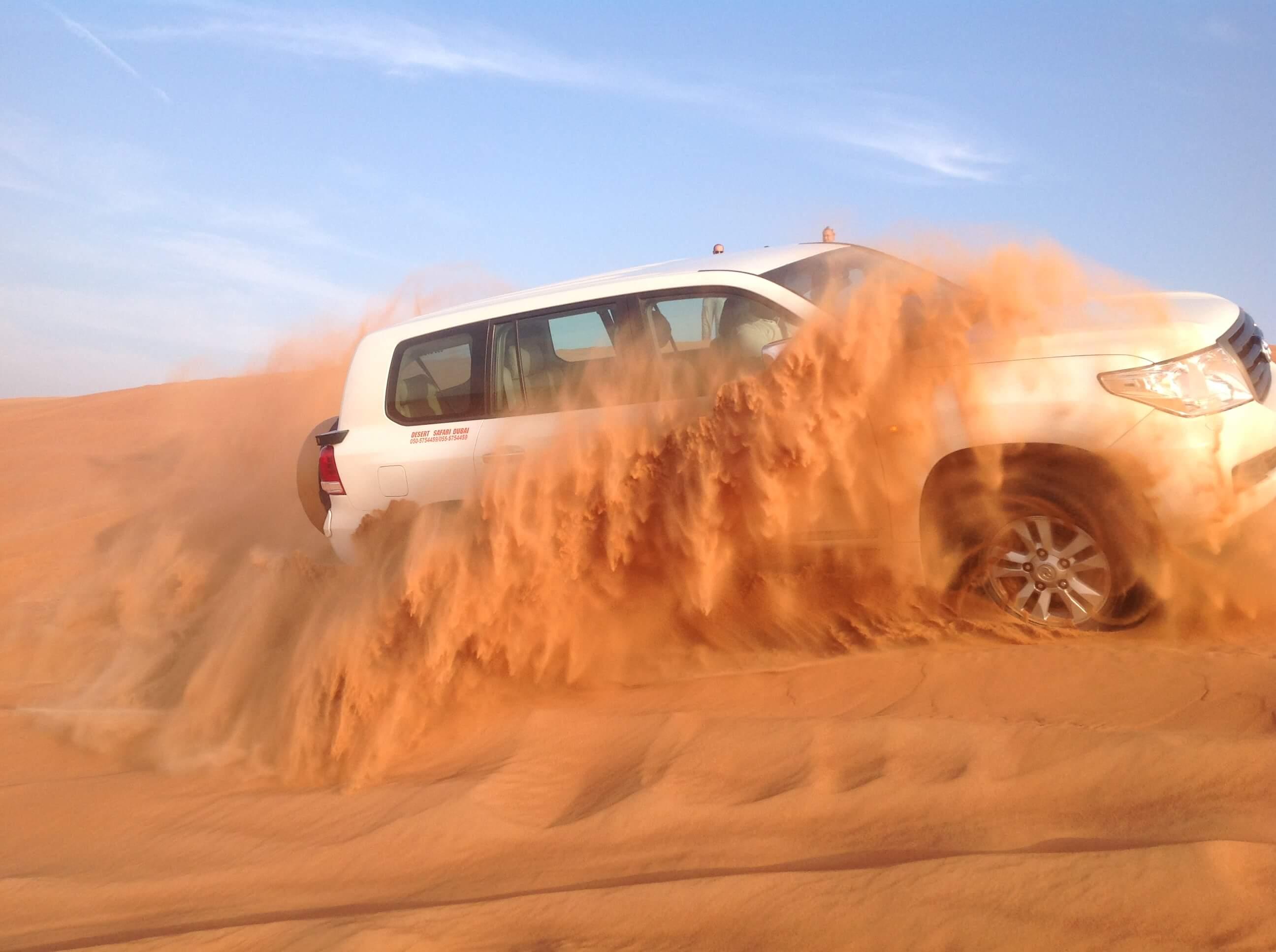 FEEL THE VIBE OF THE MESMERIZING OVERNIGHT DESERT SAFARI