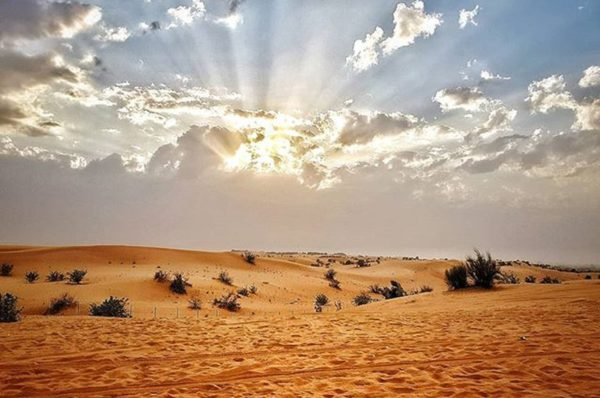 Top Best Desert Safari Tourism in Dubai