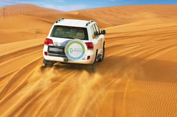 How To Find Best Activities in Dubai?