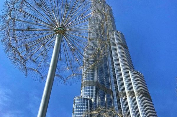 Go To Dubai With The Best Tour Operators In Dubai