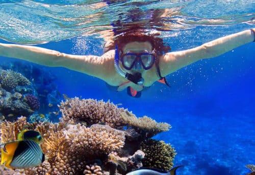 snorkeling tour dubai