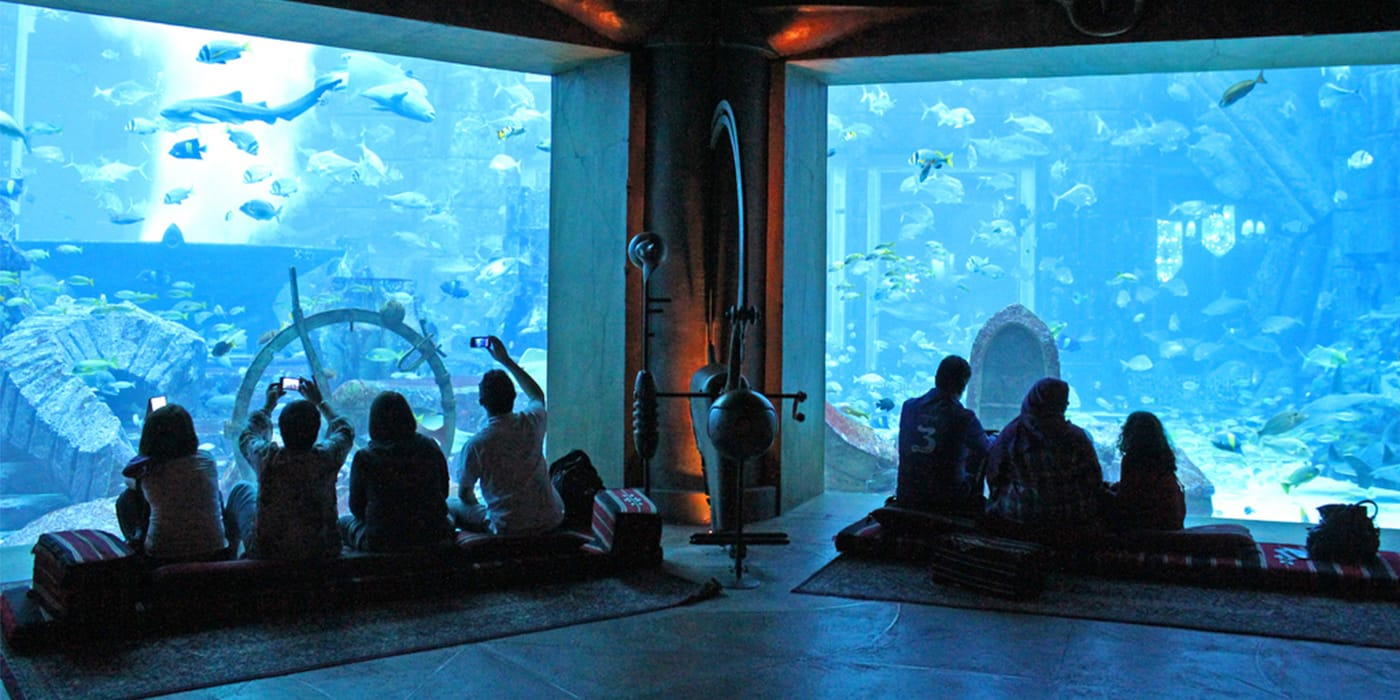 The Lost Chambers (Aquarium At Atlantis)